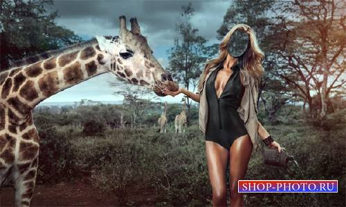 Шаблон для фотошопа - Среди жирафов