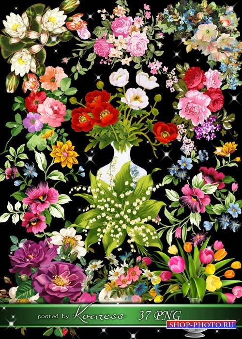 Рисованные цветы, букеты и цветочные композиции - png клипарт на прозрачном ...