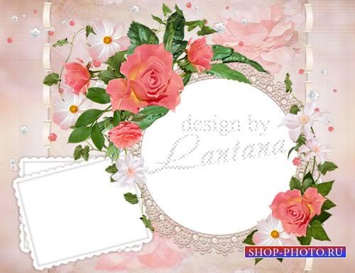 Романтичная рамочка - Любуюсь красками цветов, палитрой ярких лепестков