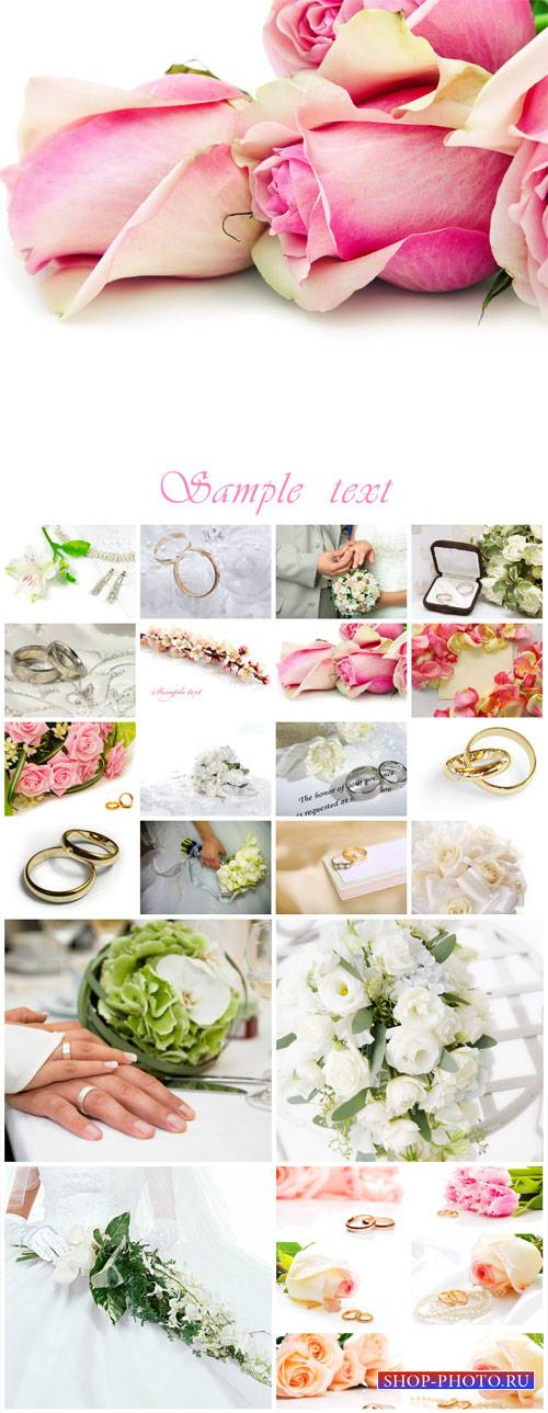 Wedding collage, flowers, bride and groom - stock photos