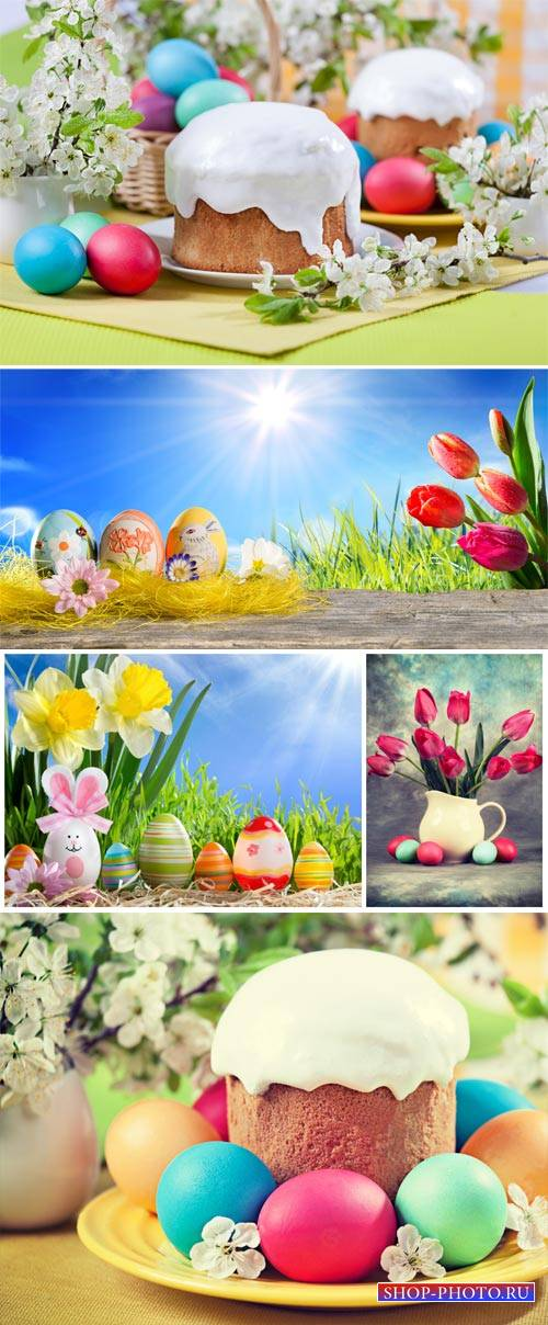 Easter background with easter eggs and flowers
