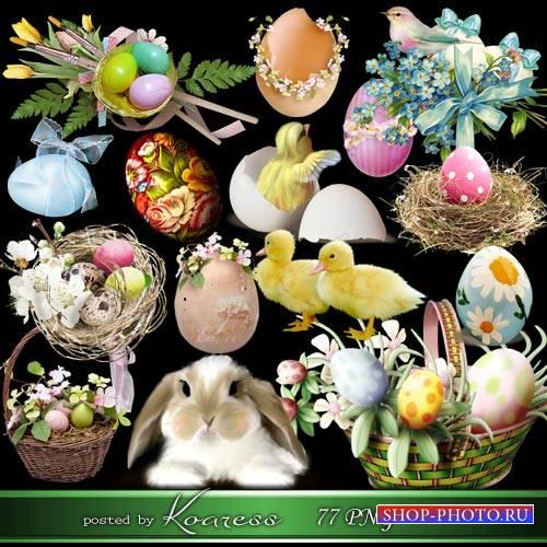 Пасхальный клипарт - цветы, птички, зайчики - Пусть Пасхальное воскресенье  ...