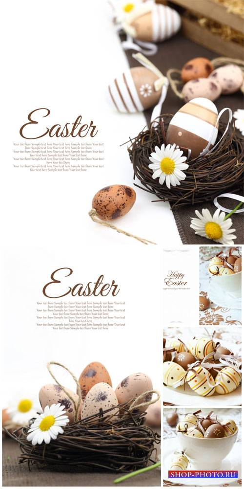 Happy Easter, Easter eggs and daisies - stock photos