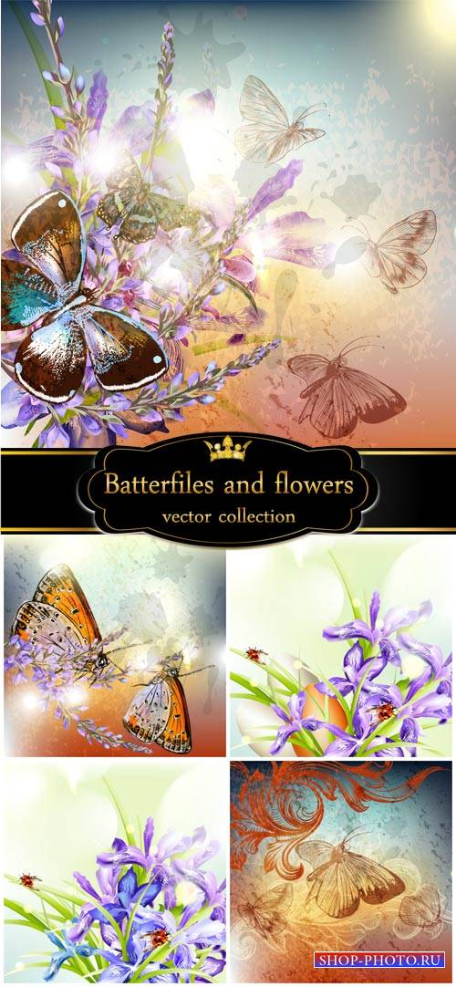 Butterflies and flowers, vector backgrounds