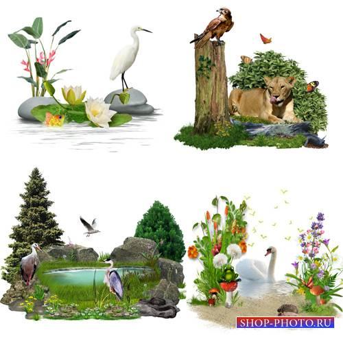 Клипарт – кластеры – Картинки природы