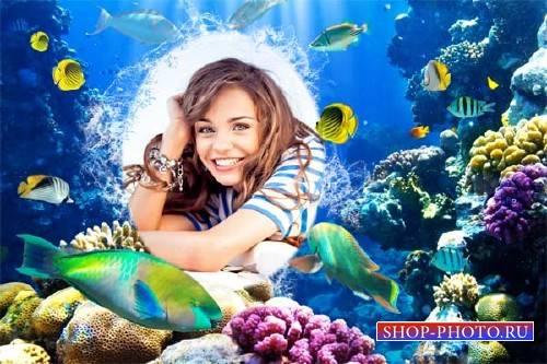 Фоторамка для фотошопа - Яркие рыбки