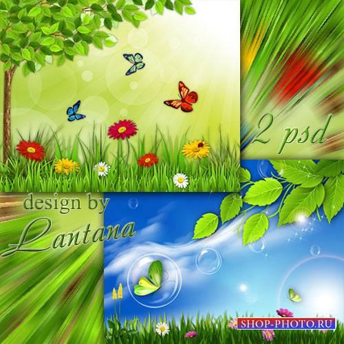 PSD исходники - Сколько бабочек, цветов, и тепла, и света