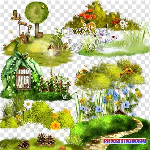 Лужайки, трава - PNG клипарт
