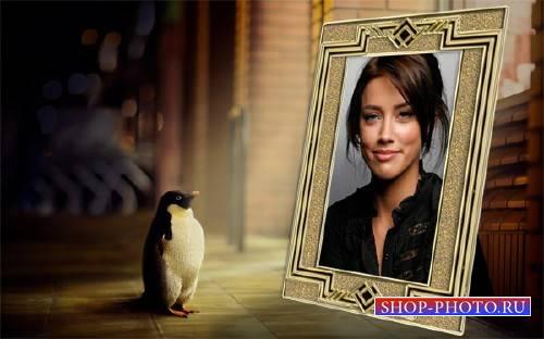 Рамка для фото - Пингвин смотрит на ваше фото