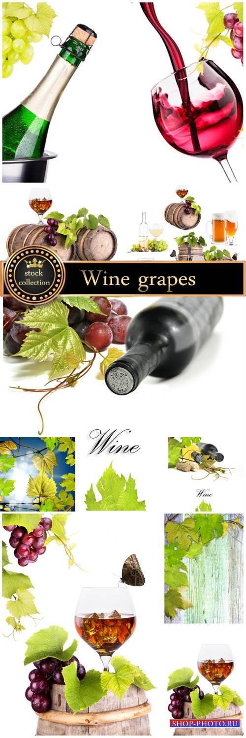 Wine, grapes, wine glasses - stock photos