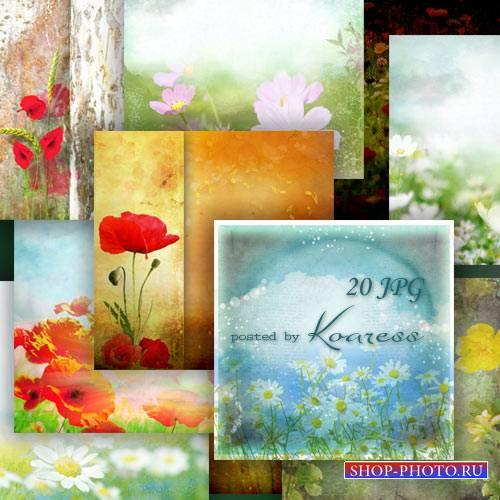 Набор цветочных фонов с луговыми цветами