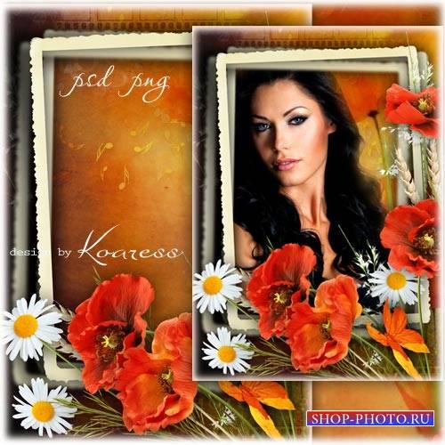 Романтическая цветочная рамка для фотошопа с маками и ромашками - Краски ле ...
