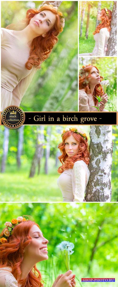 Girl in a birch grove - Stock Photo