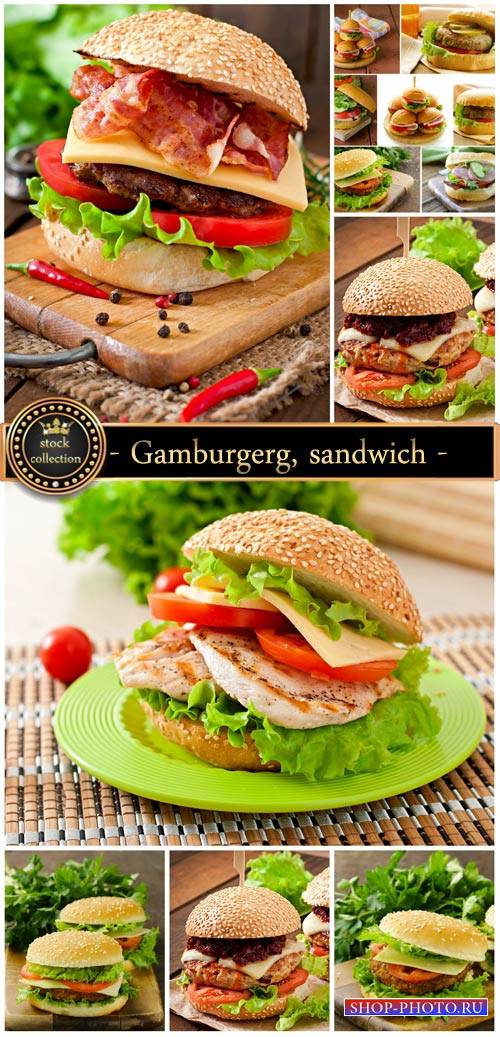 Gamburgerg, sandwich - stock photos