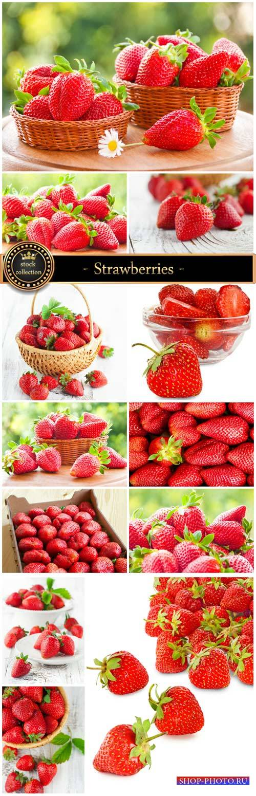 Strawberries, fresh berries - Stock Photo