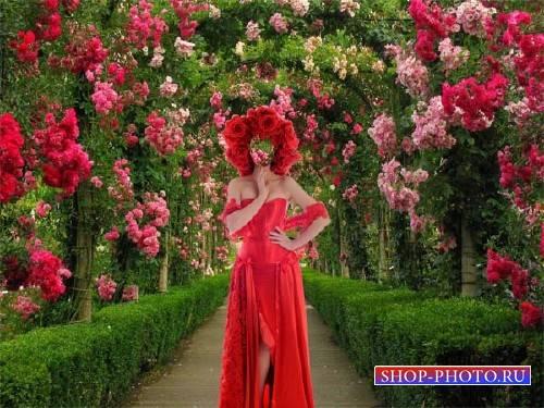 Шаблон для фотошопа - В красном наряде в аллее роз