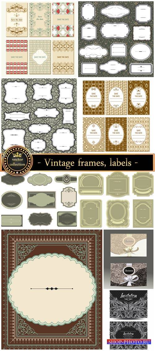 Vintage, labels, and invitations vector