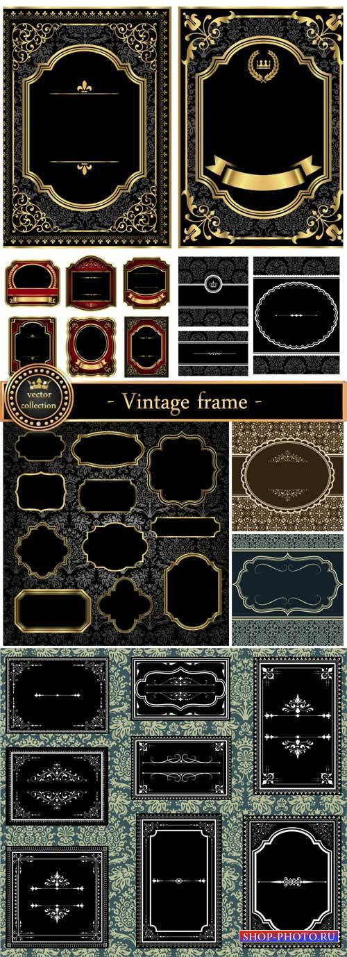 Vintage  vector, patterns and ornaments