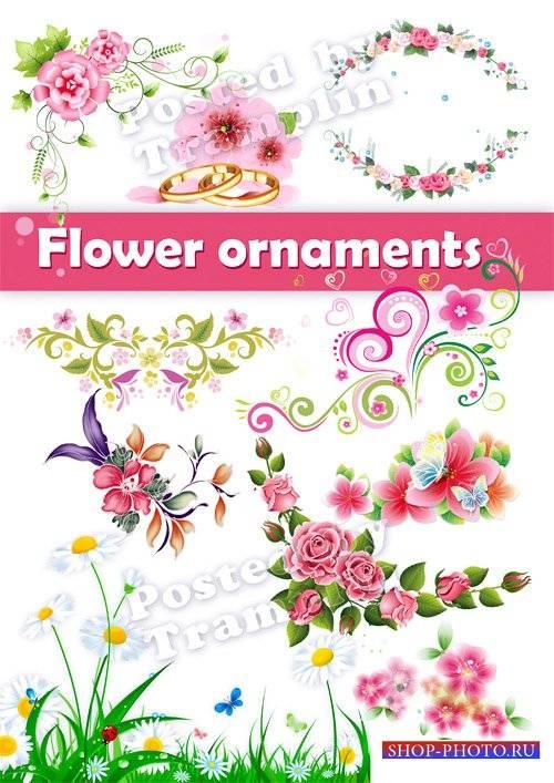 Цветы и цветочные орнаменты  на прозрачном фоне