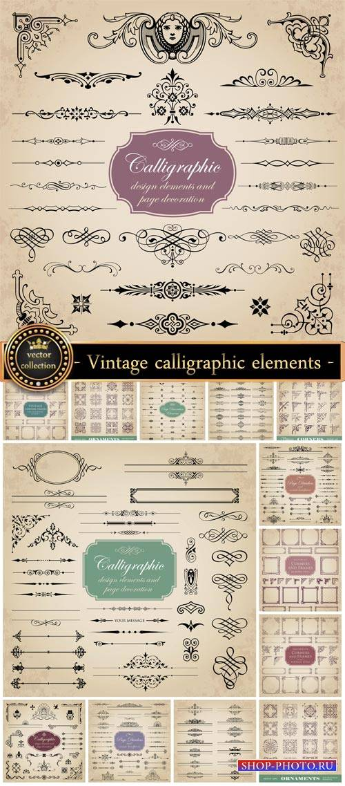 Vintage corners, and calligraphic elements vector