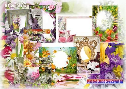 Сборник цветочных рамок – Как прекрасен мир