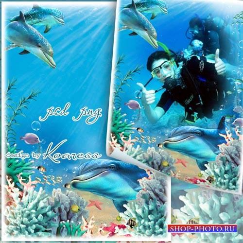Рамка для фотошопа с кораллами и дельфинами - В лазурном океане