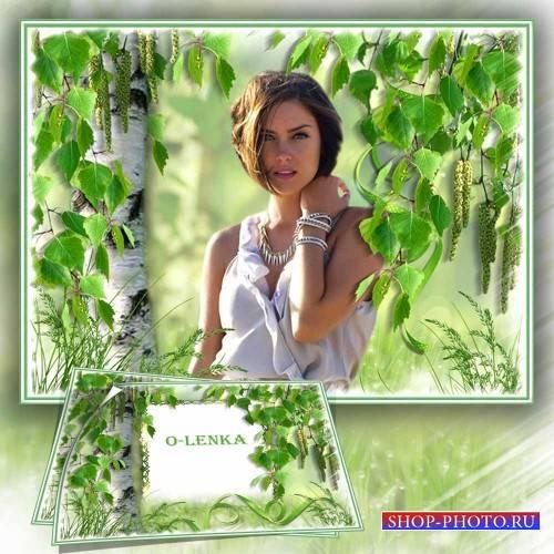 Рамка коллаж для фотошопа - Берёза зелёные косы развесила