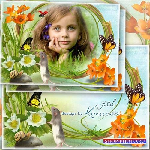 Детская летняя фоторамка - Летний луг