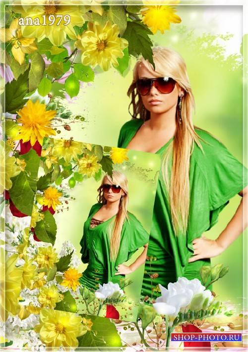 Рамка для фотошопа – Цветы солнца