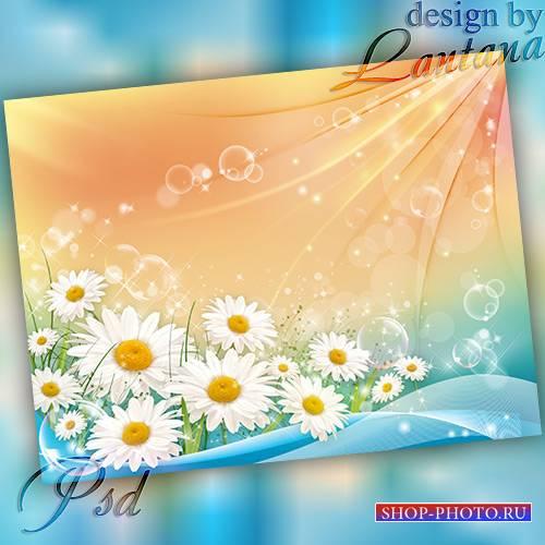 PSD исходник - Посланьем лета, лепестками сияет разноцветный день