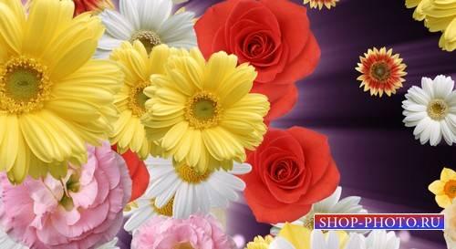 Футаж - переход с цветами