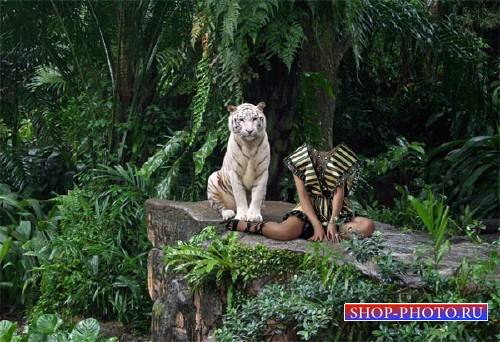 Фото шаблон - Фото с большим тигром