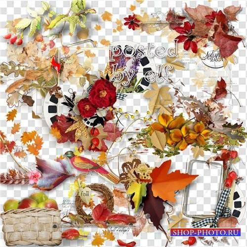 Осенний клипарт без фона