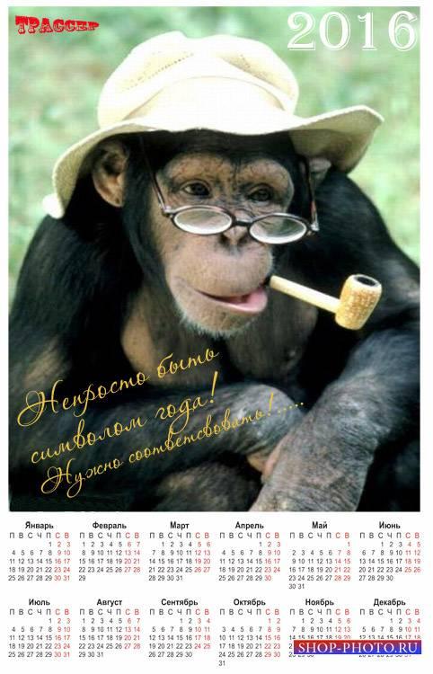 Настенный календарь на 2016 год - Озорная обезьяна
