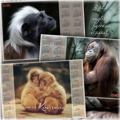 Набор календарей на 2016 год - Год Обезьяны