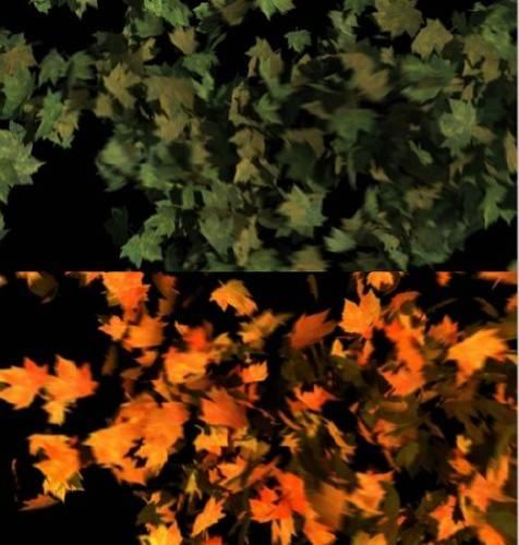 Футажи с летящими листьями