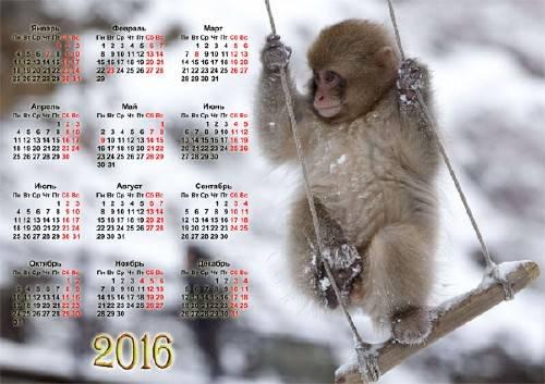 Календарь - Маленькая обезьянка зимой