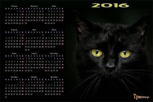 Календарь на 2016 год - Жил да был черный кот