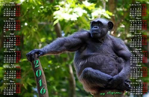 Календарь - Год обезьяны