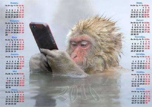 Красивый календарь - Обезьяна с телефоном