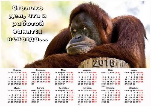 Календарь на 2016 год - Обезьяна в раздумьях