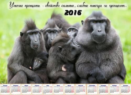 Настенный календарь - Уметь простить