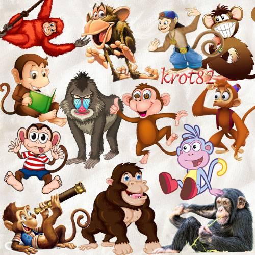 Символ 2016 года PNG – Обезьяны, обезьянки и гориллы
