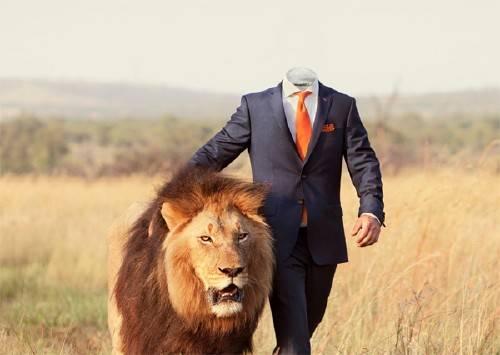 Шаблон psd мужской - С большим львом в костюме