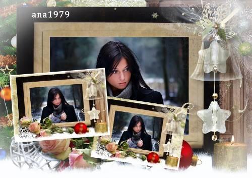 Рамка для фотошопа – Зимние розы