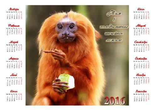 Календарь на 2016 год - Прикольная обезьянка с фруктом