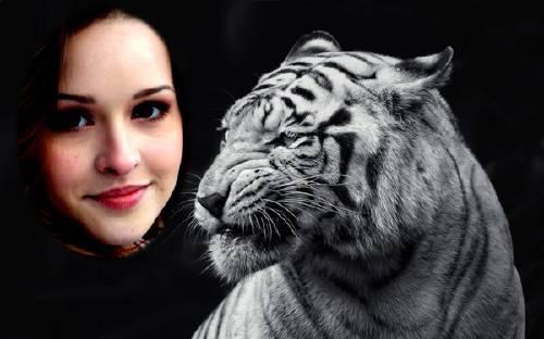 Рамка для фотографии - Свирепый белый тигр