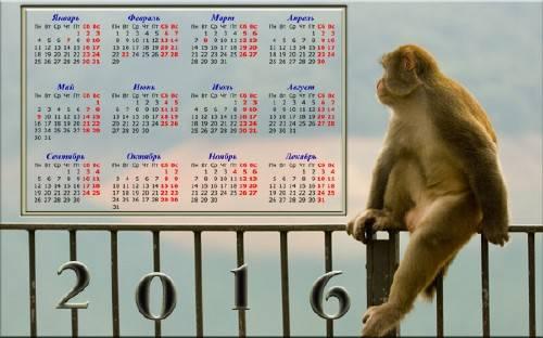 Обезьяна в раздумьях - Настенный календарь