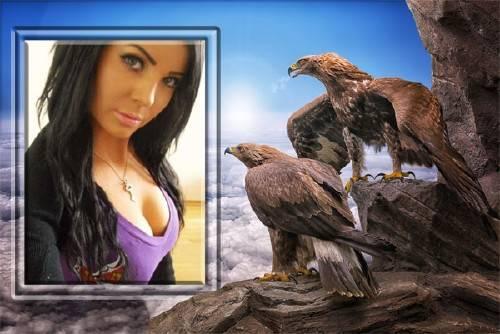 Рамка для фотографии - 2 орла любуются фотографией