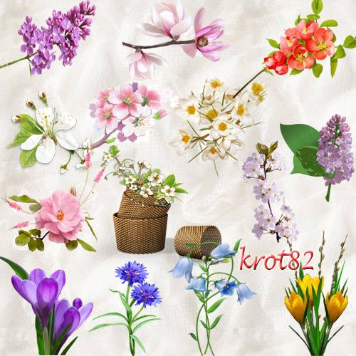 Весенний клипарт для фотошопа – Цветы и ветки деревьев с цветами